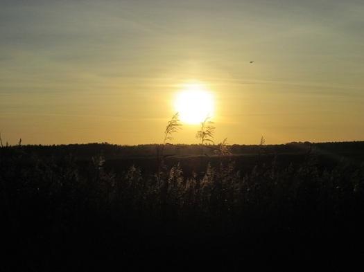 De zonsondergang in het LOFARgebied
