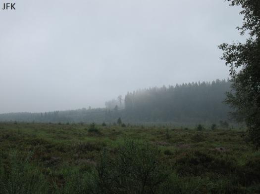 Door het sparrenbos dat hier op de foto (half) zichtbaar is, hebben wij eerder die dag gelopen