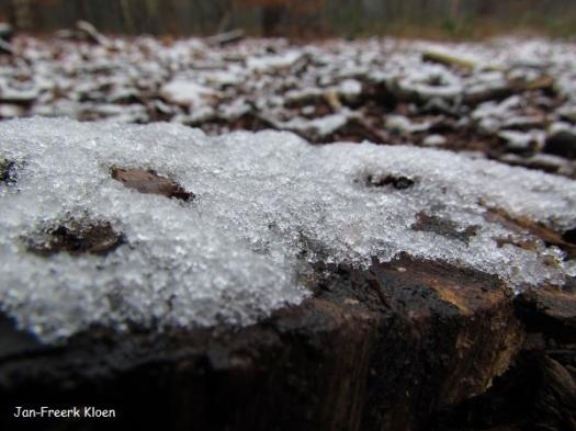 Vanochtend: beetje sneeuw op de Wageningse Berg