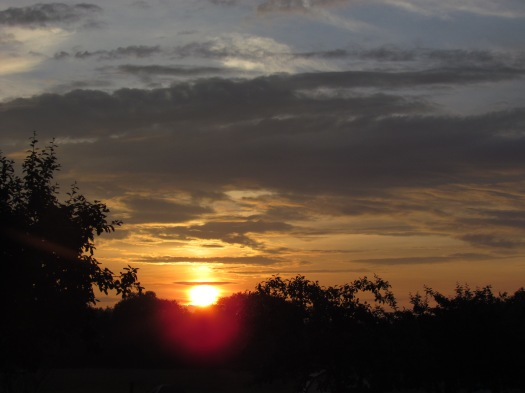 Zonsondergang bij de boerderij