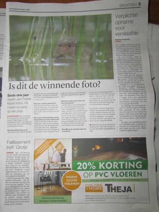 Het krantenartikel!