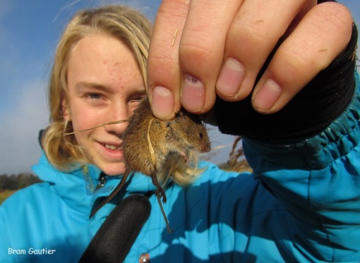 Dit ben ik met mijn lievelingsmuis: de dwergmuis! Nu heb ik hem na de mooie foto van de dwergmuis in het water ook in de hand gehad!